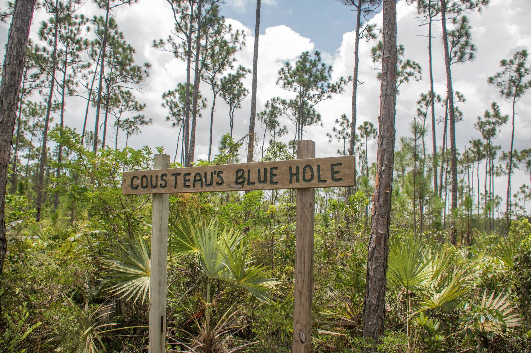 Cousteau's Blue Hole - Fresh Creek Adventures